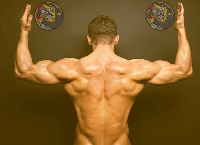 Suplementos de musculación