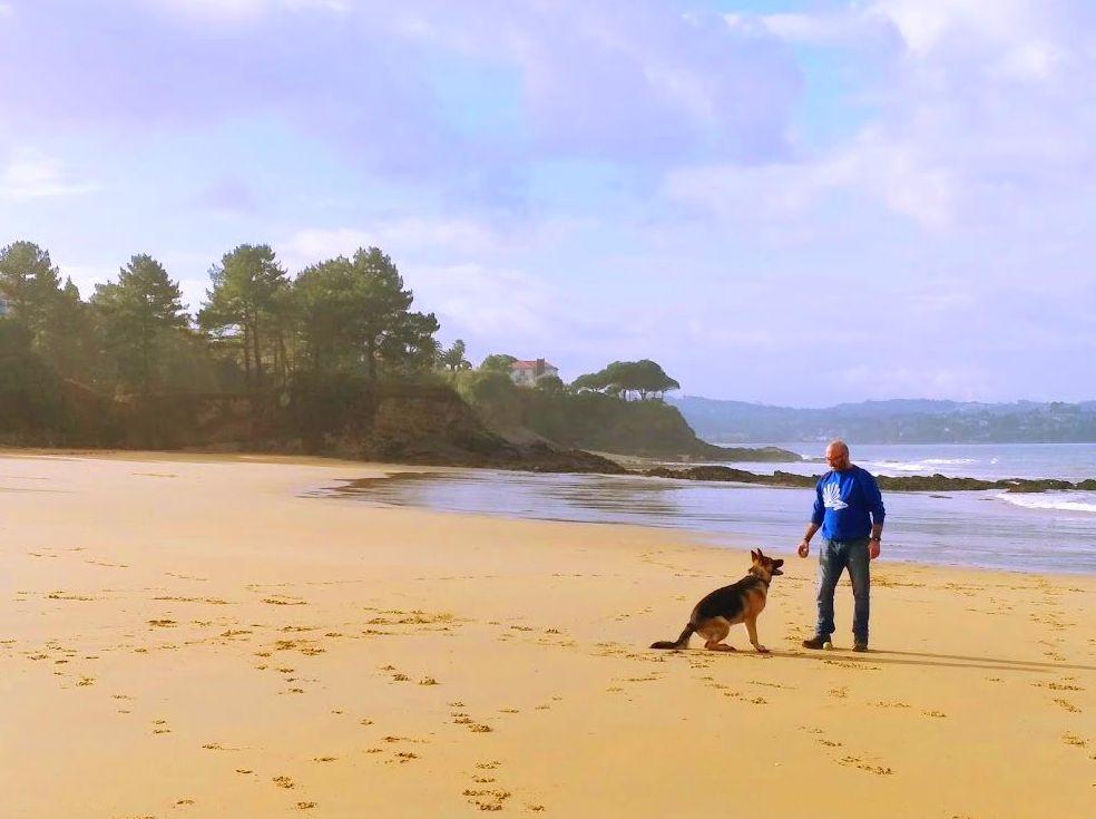 Adiestramiento Canino: Servicios de CaminoCan