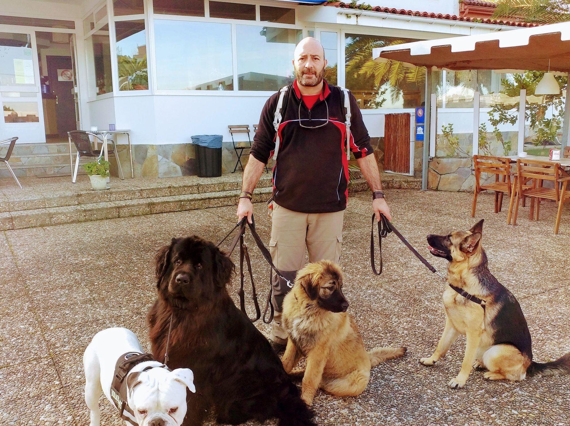 Paseos de mascotas.: Servicios de CaminoCan