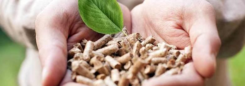 Comprar pellet barato - bigmatmm.es