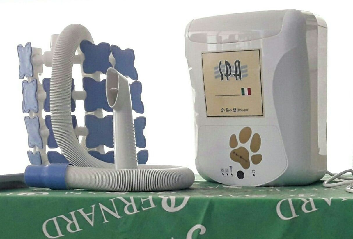 Spa con Ozonoterapia: Productos y Servicios de AnimaLook