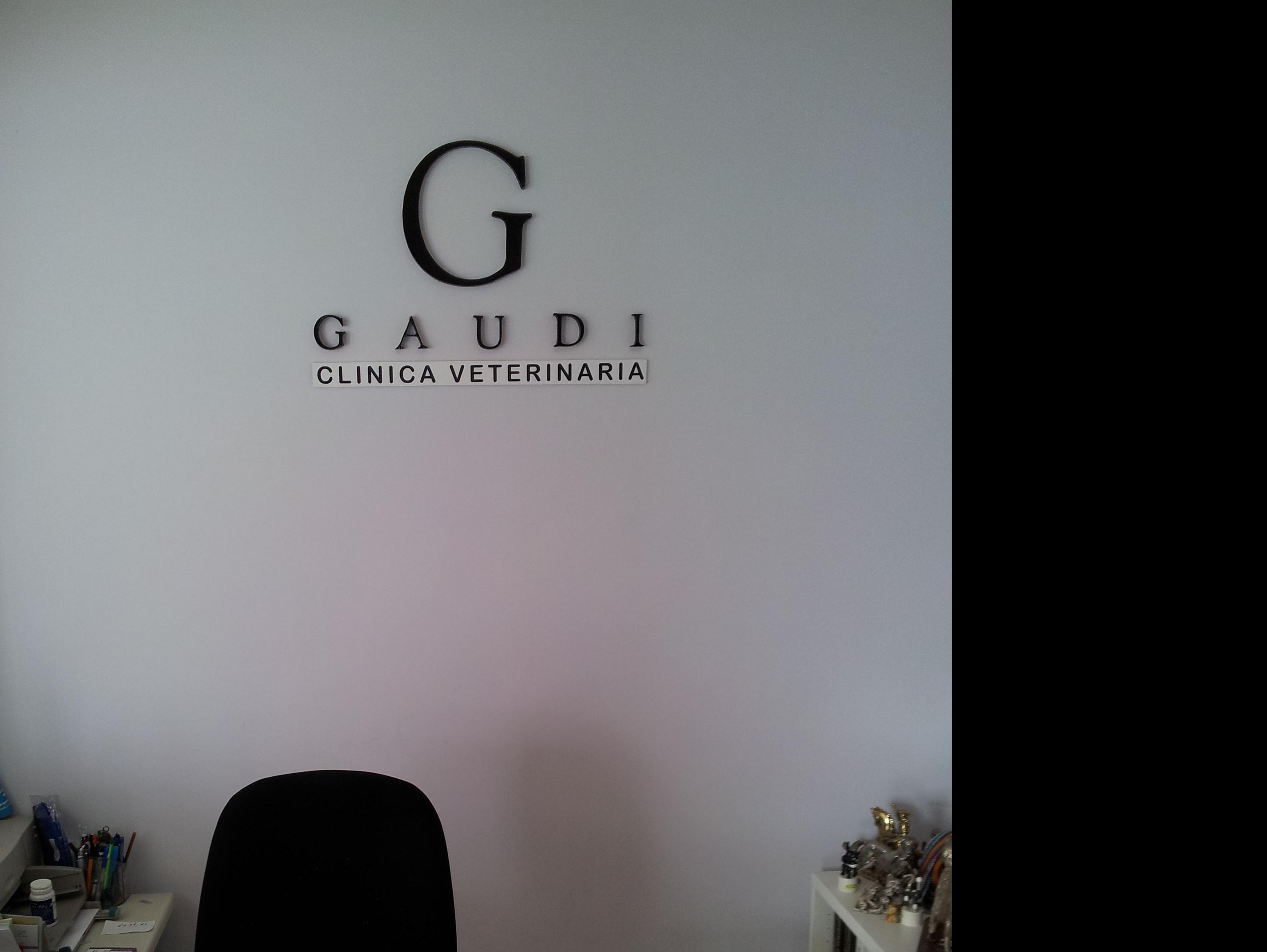 Clínica Veterinaria Gaudi en Collado Villalba