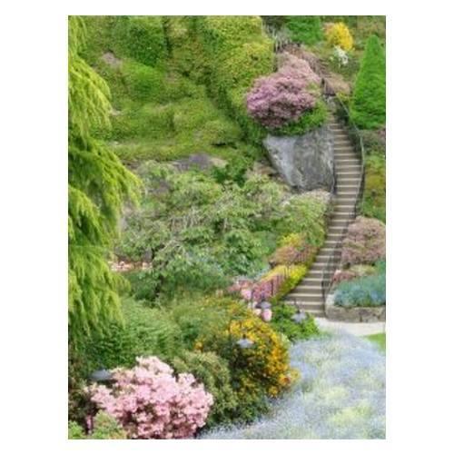 Jardines históricos: Mantenimiento de Jardines de Jardinería Suso