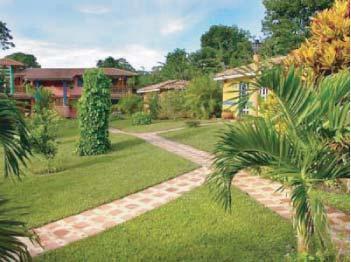 Foto 3 de Jardines (diseño y mantenimiento) en Carballo | Jardinería Suso