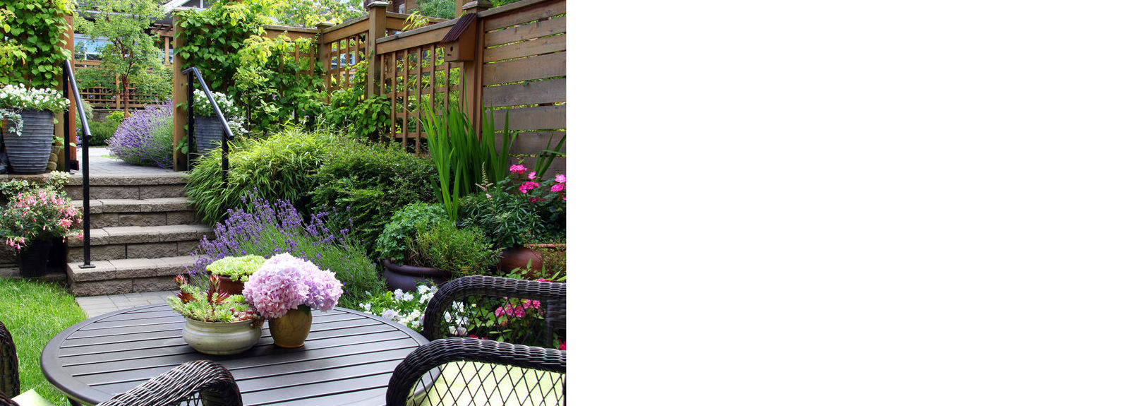 Jardines: Mantenimiento de Jardines de Jardinería Suso