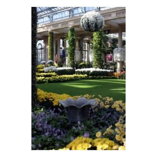 Implantaciones de césped: Mantenimiento de Jardines de Jardinería Suso