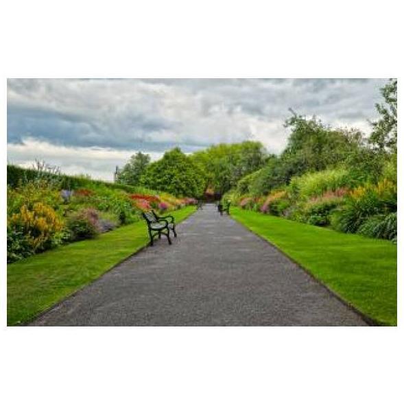 Destacamos : Mantenimiento de Jardines de Jardinería Suso