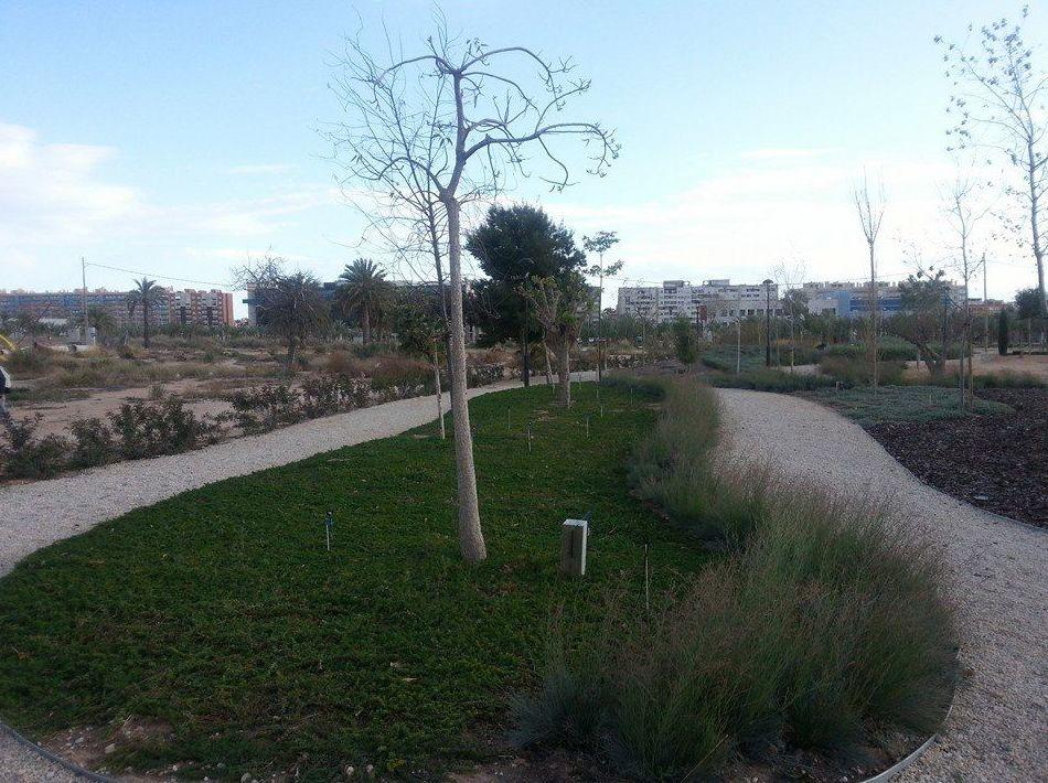 Instalación de césped: Servicios de Mantenimientos y Jardinería La Jara