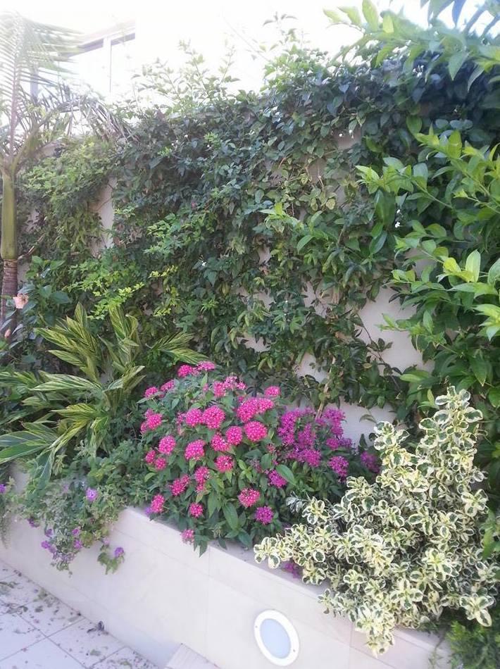 Diseño e instalación de jardines