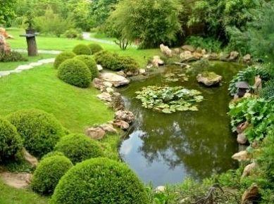 Mantenimiento y conservación de jardines: Servicios de Mantenimientos y Jardinería La Jara