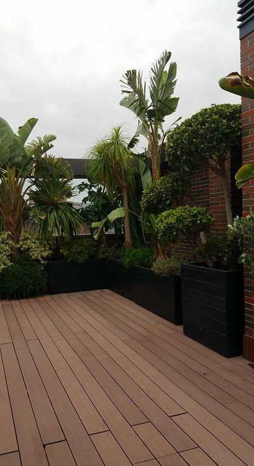 Diseño y mantenimiento de jardines de interior