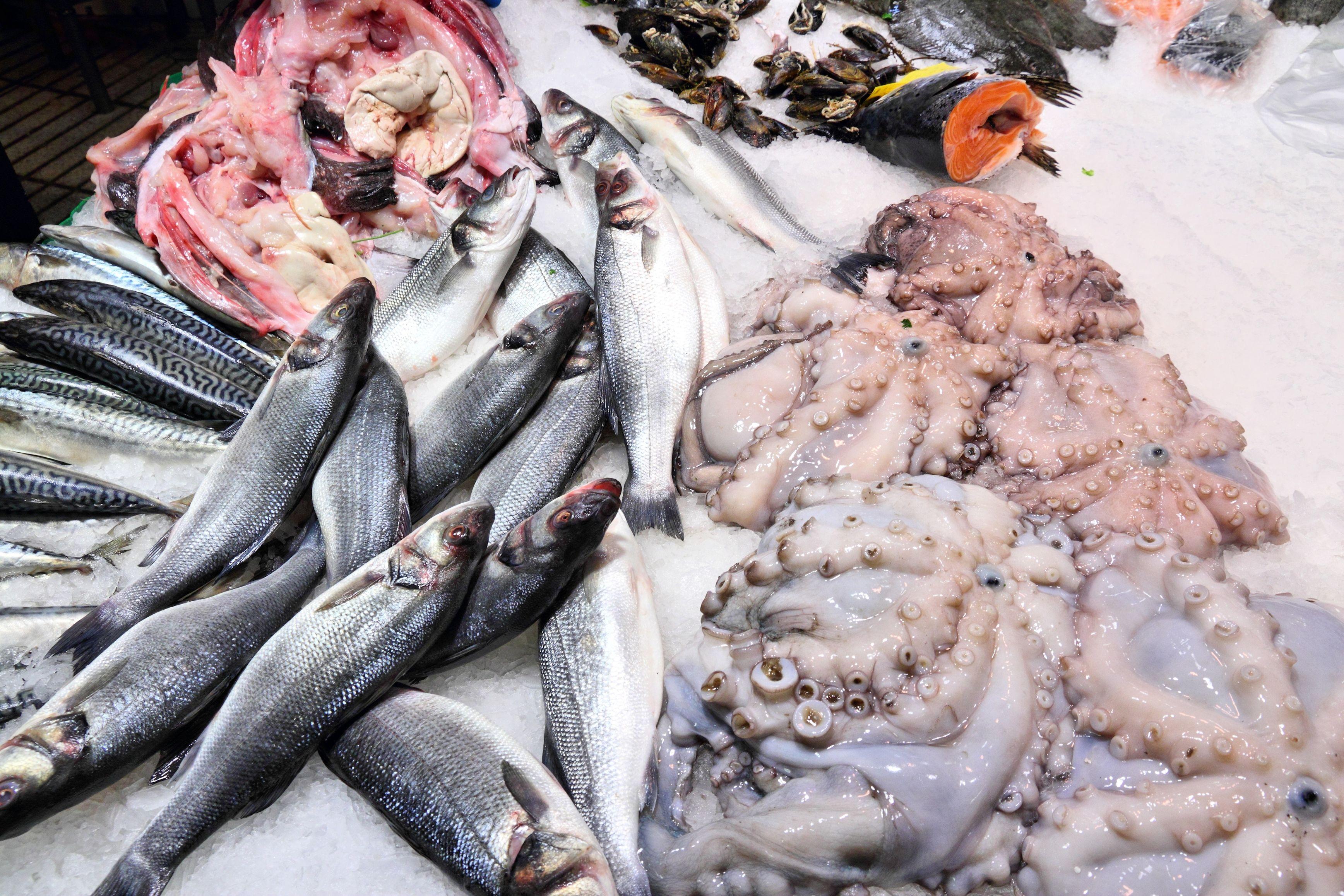 Variedad de pescados al mejor precio