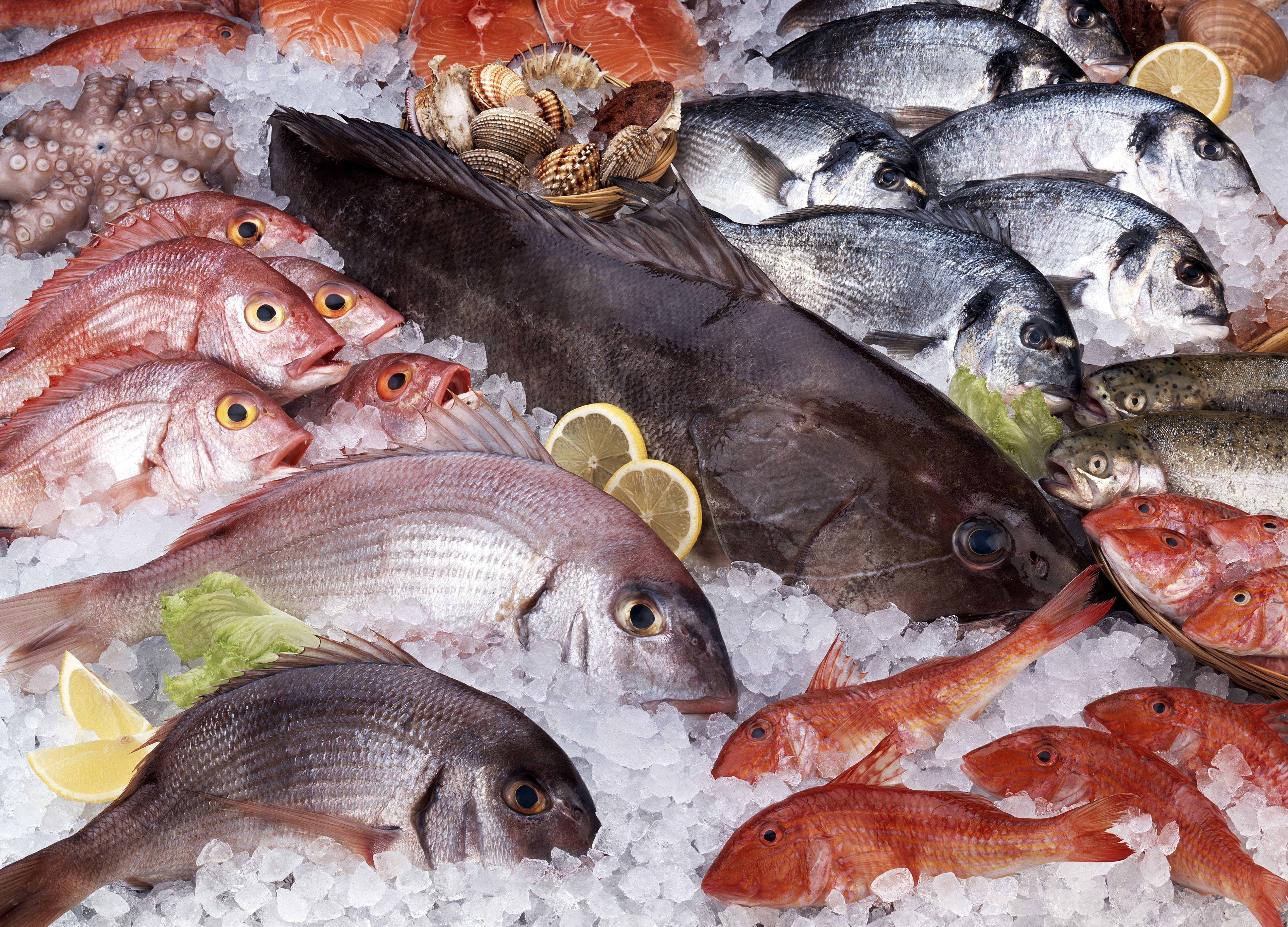 Venta de pescado fresco