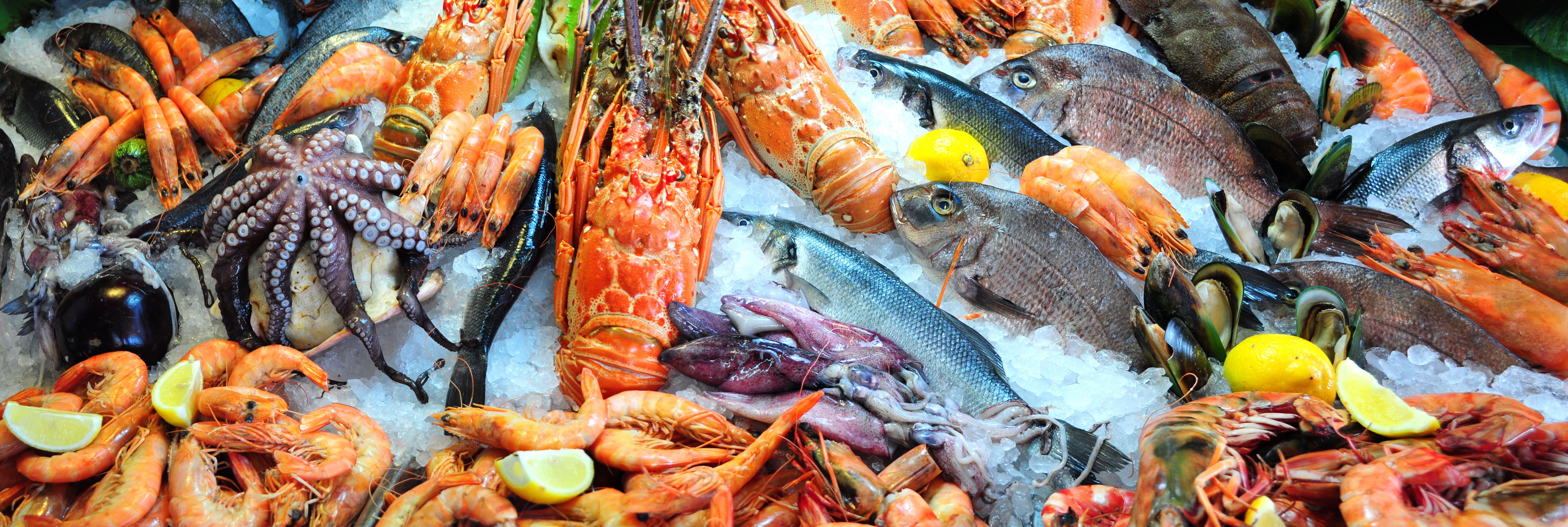 Pescado de Galicia
