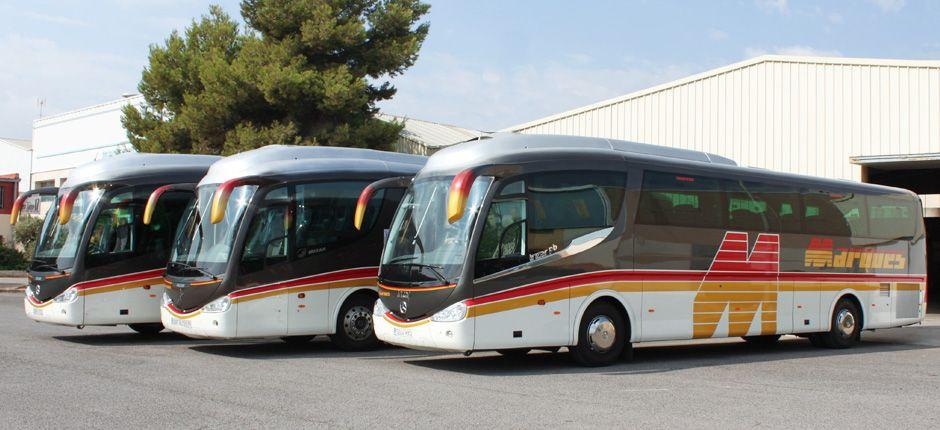 Alquiler de autobuses para eventos en Valencia
