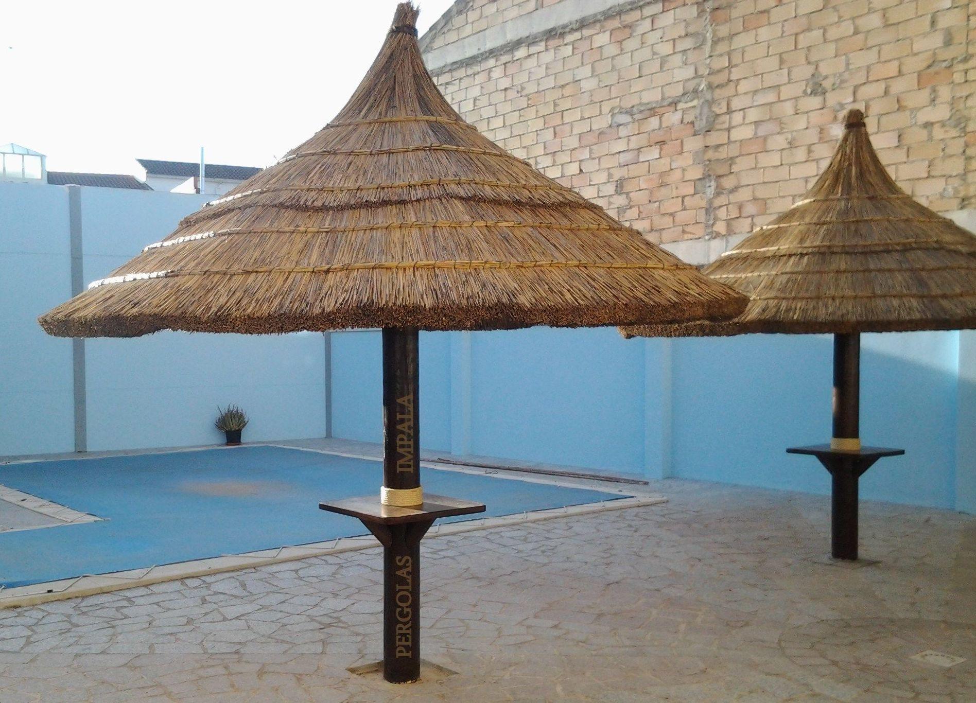 Sombrillas de junco africano
