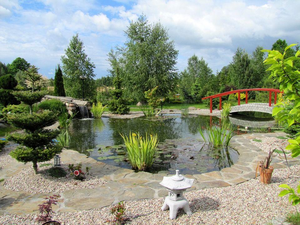 Diseño de jardines: Servicios de Construcbrafim