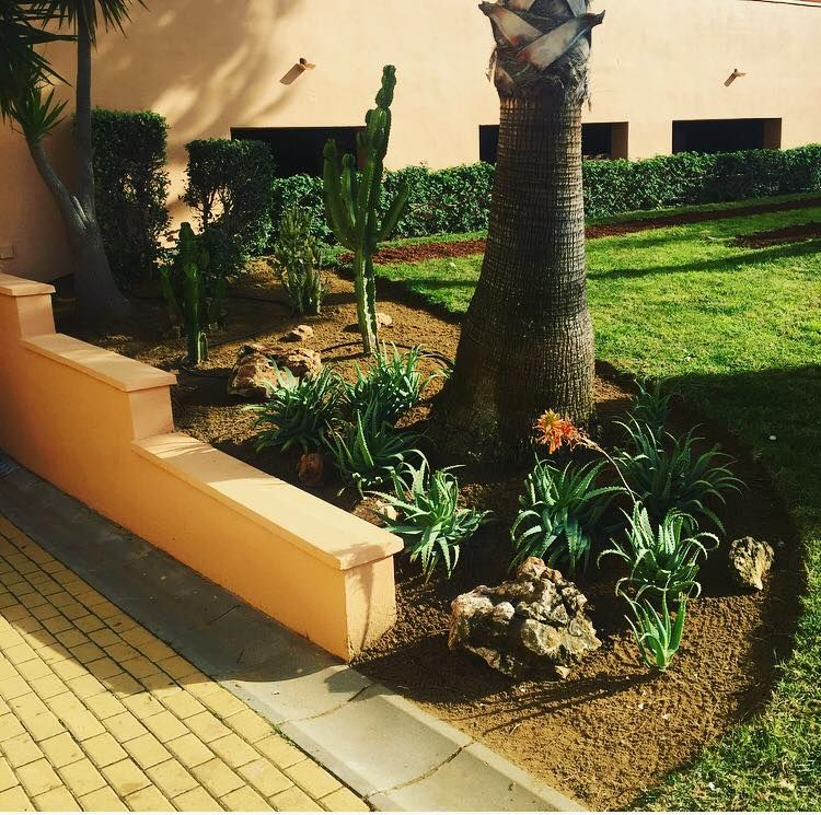 Diseño de jardines en Huelva