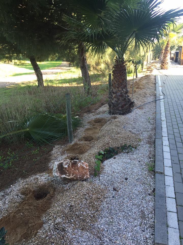 Limpieza de jardines en Huelva