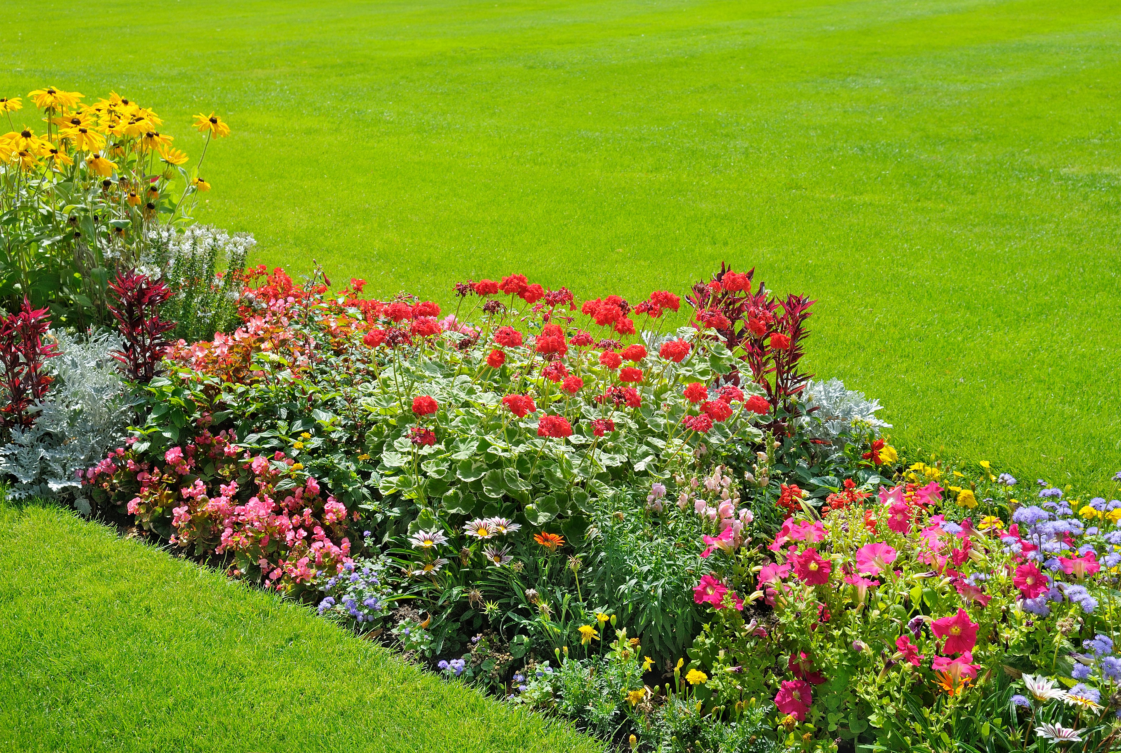 Especializados en trabajos de jardinería