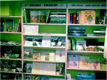 Foto 7 de Librerías en Durango | Librería Urrike