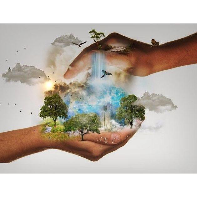 Ambiental: Servicios de Manuel Reyes Reyes