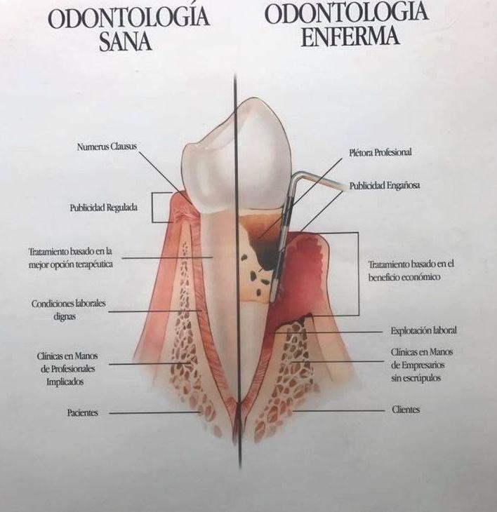 Consejos para una buena valoración odontologica