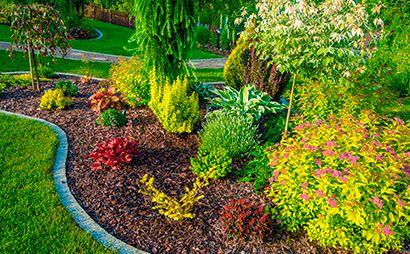 Diseño y mantenimiento de jardines en Valverde del Camino