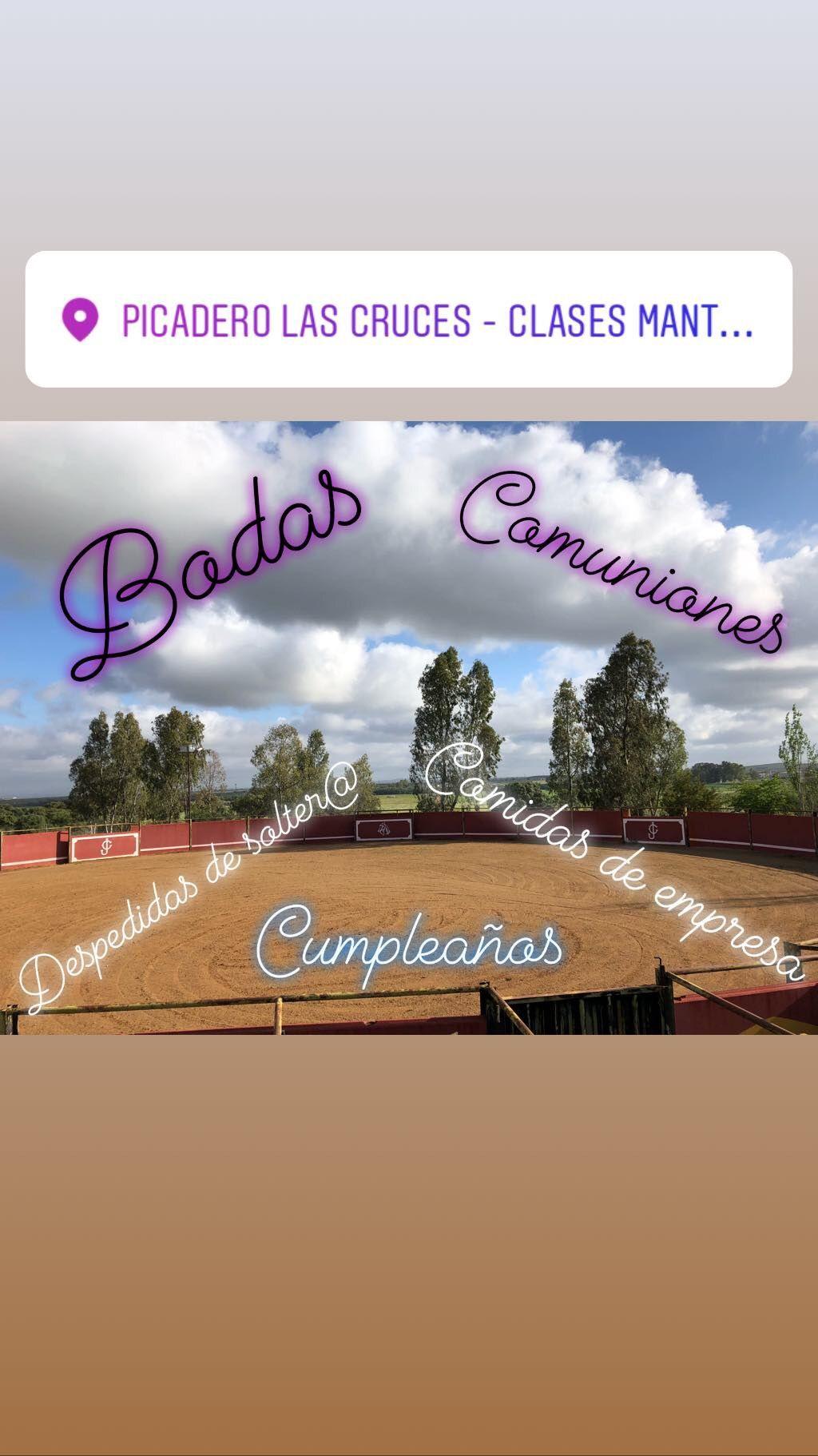 Espectáculos ecuestres para eventos en Don Benito, Badajoz