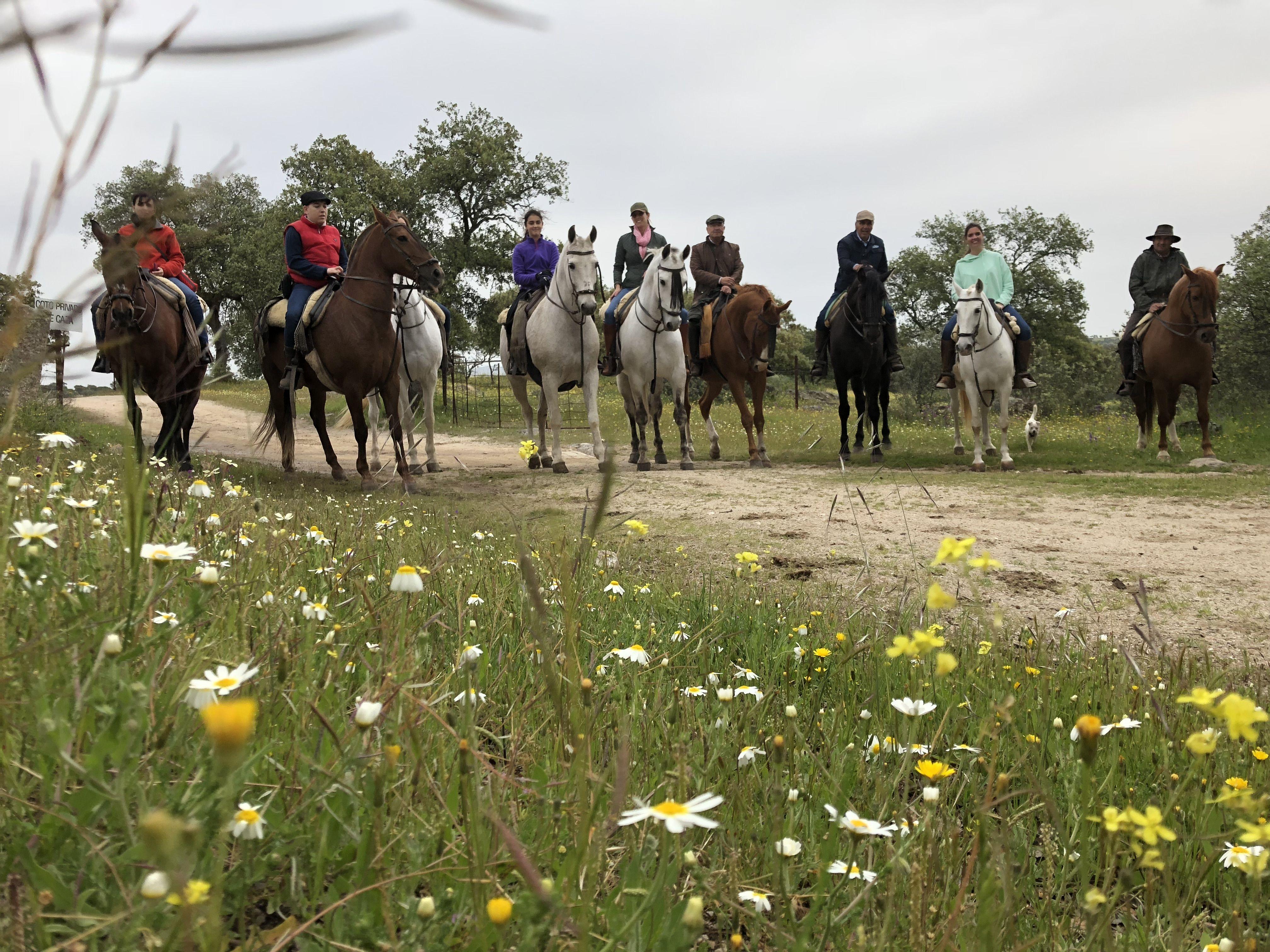 Rutas a caballo: Servicios de Picadero Escuela Las Cruces