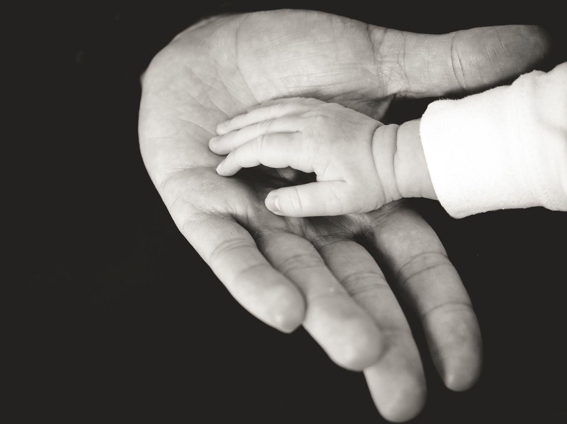 Seguros de vida: ¿Qué hacemos?  de Gestoría Cebrián