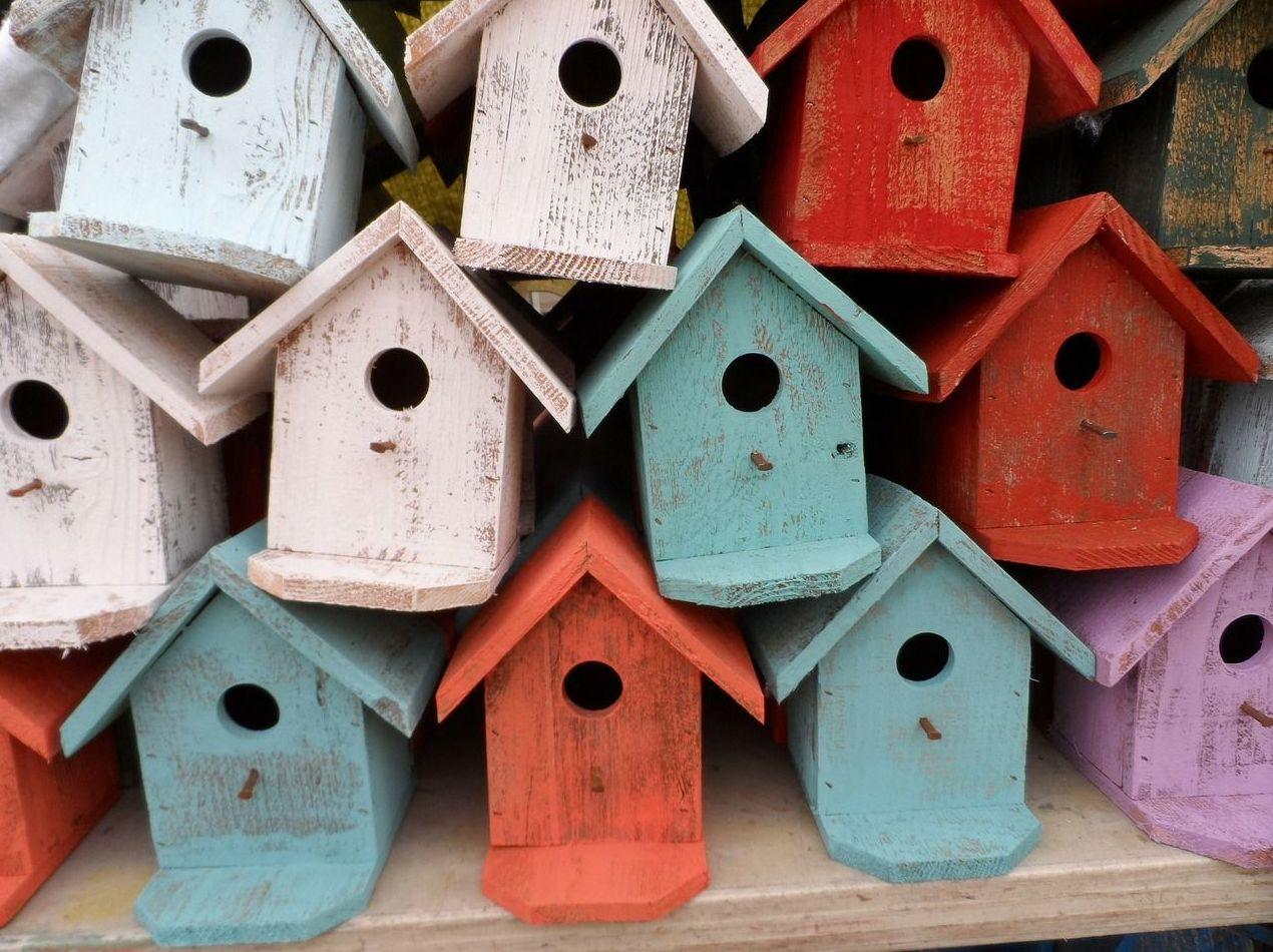 Seguros del hogar: ¿Qué hacemos?  de Gestoría Cebrián