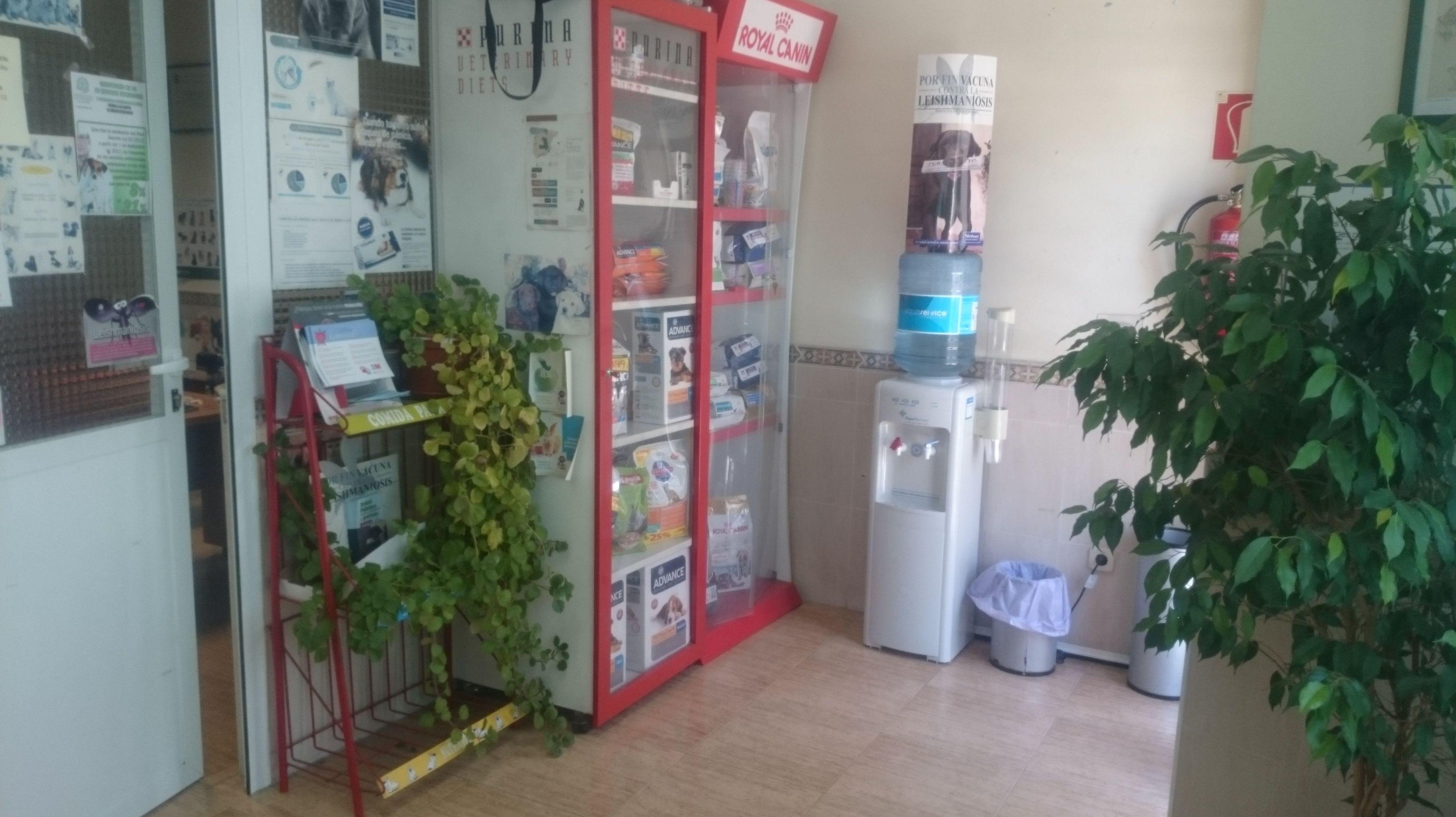 Foto 4 de Clínicas veterinarias en Camarma de Esteruelas | Centro Veterinario Esteruelas