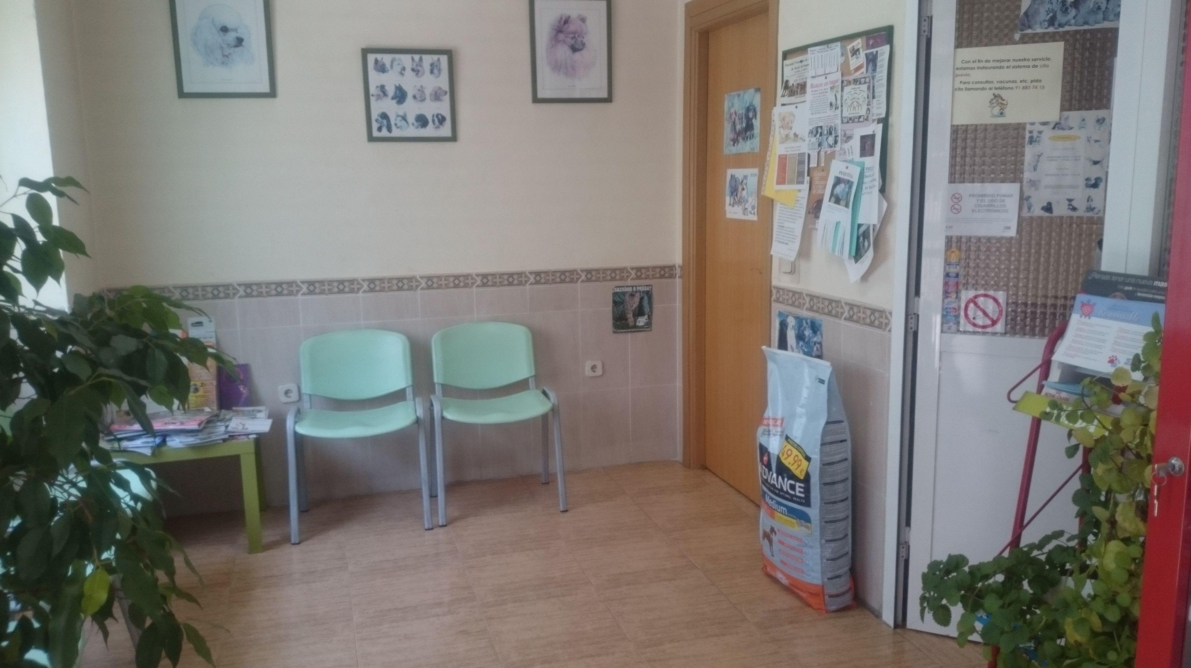Foto 1 de Clínicas veterinarias en Camarma de Esteruelas | Centro Veterinario Esteruelas