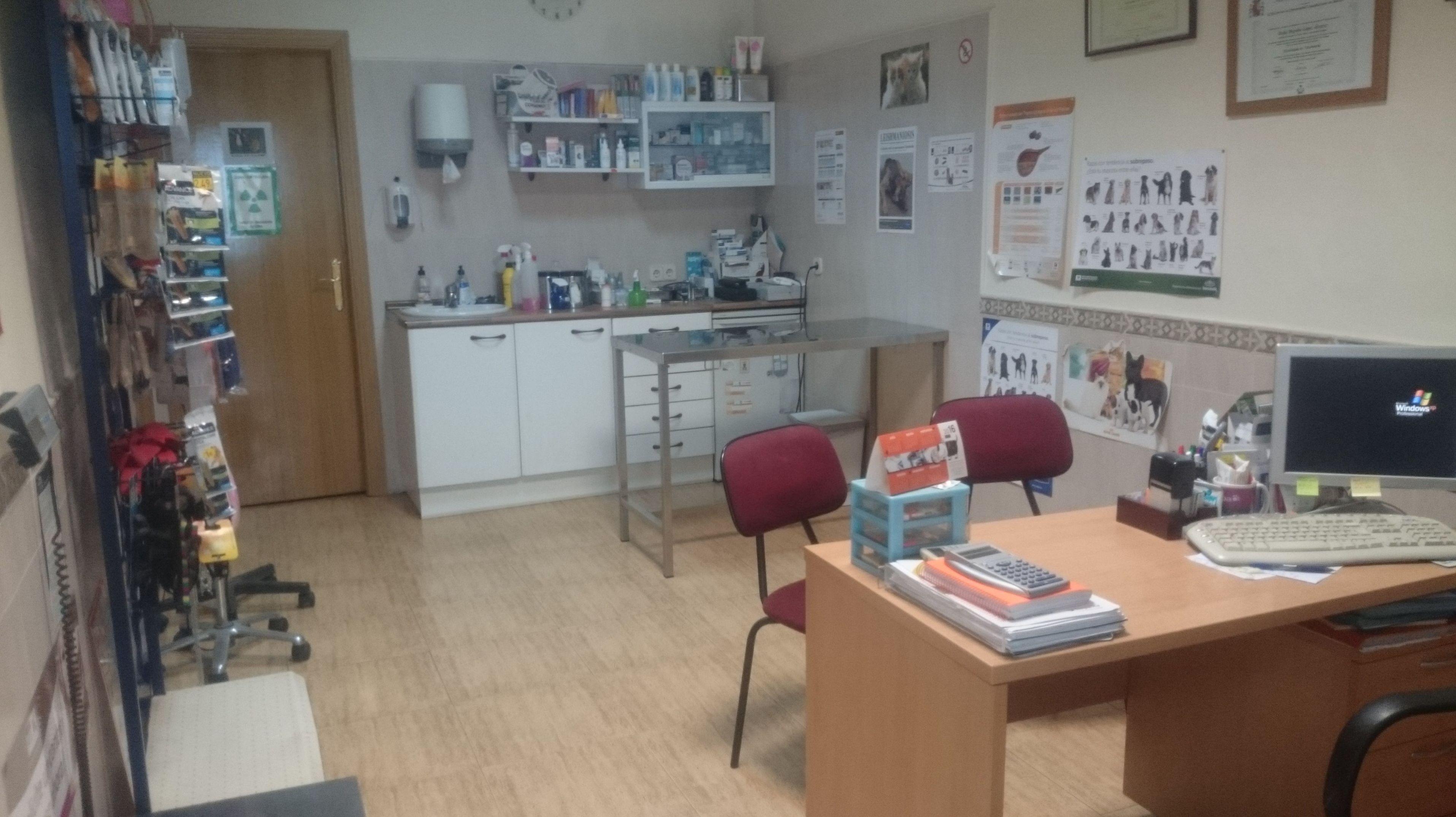 Foto 3 de Clínicas veterinarias en Camarma de Esteruelas | Centro Veterinario Esteruelas