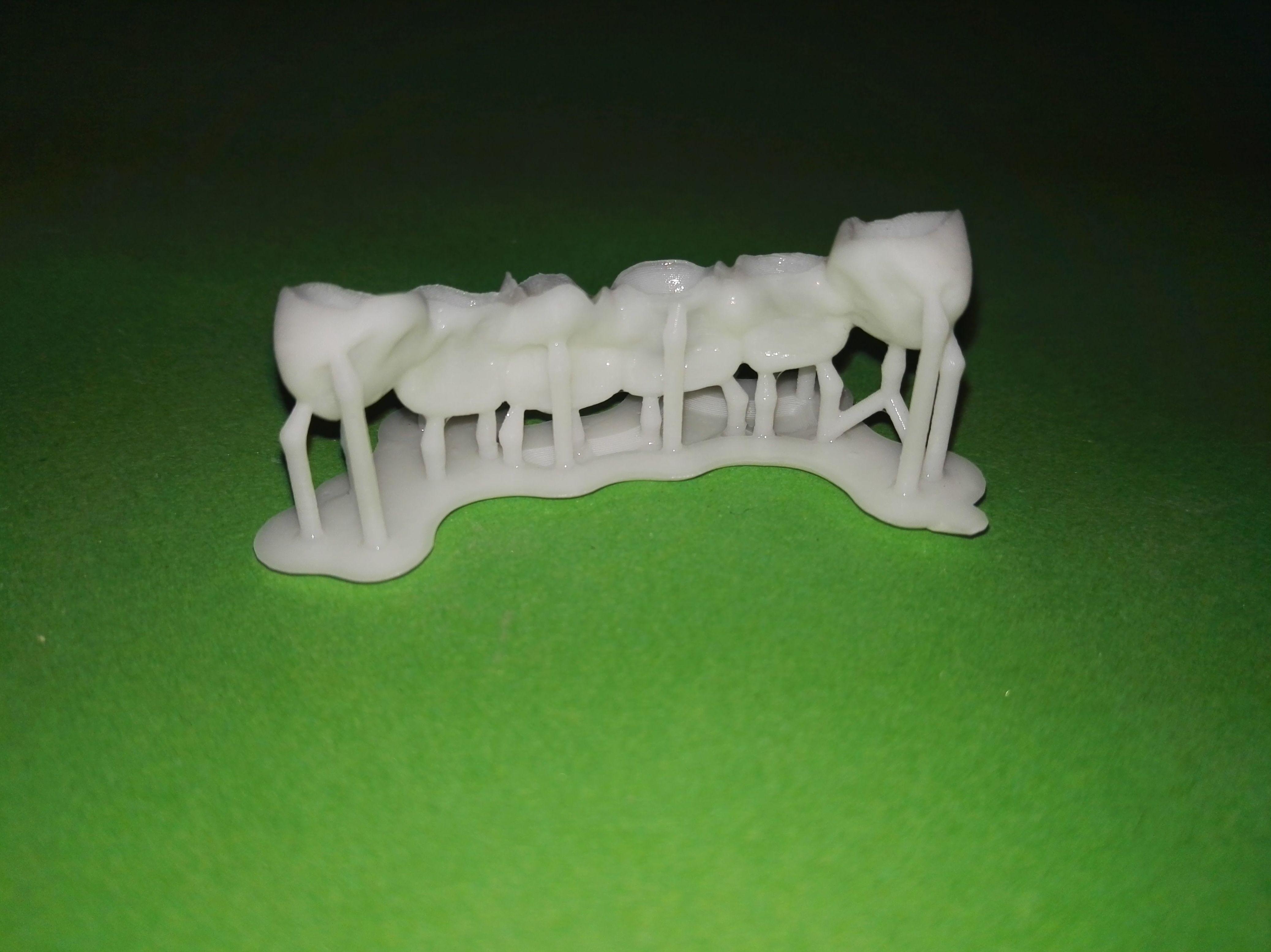 Foto 69 de Consulta de prótesis dentales en Jaén   Dental Tucci