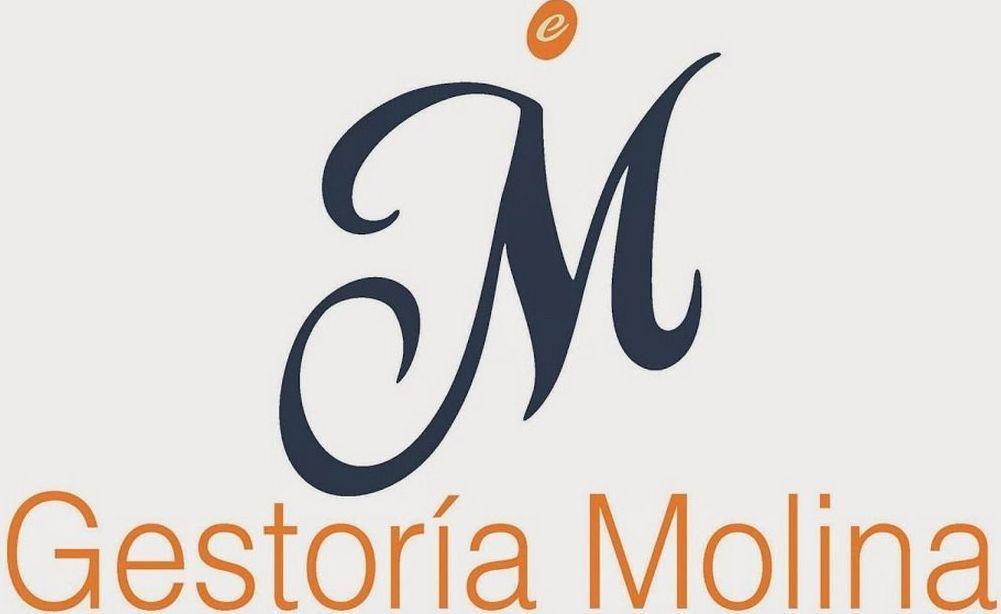 Foto 3 de Gestorías administrativas en Épila | Gestoría Molina
