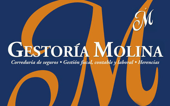 Asesoría de Empresas: Servicios of Gestoría Molina
