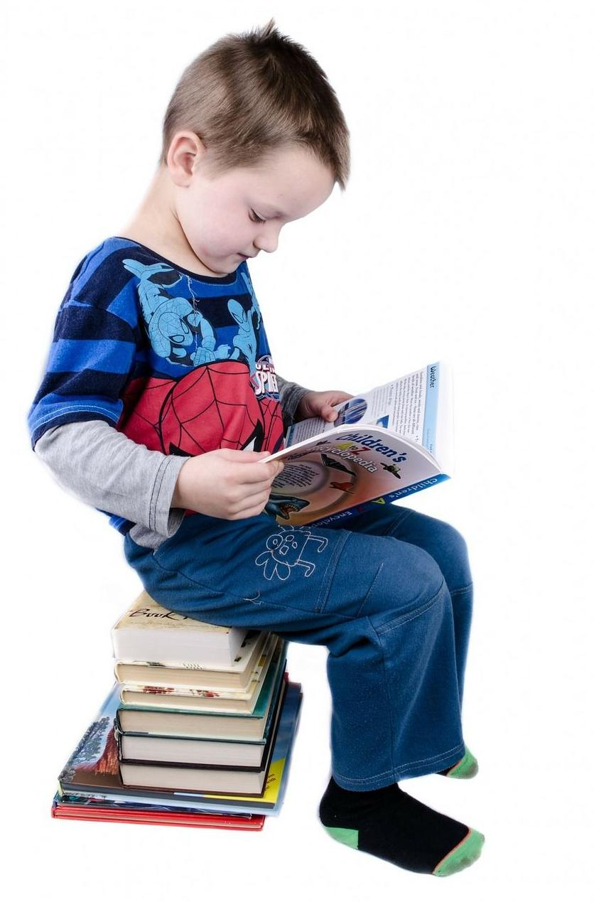 La Viña, literatura infantil y libros de texto en Torre del Mar, Vélez-Málaga