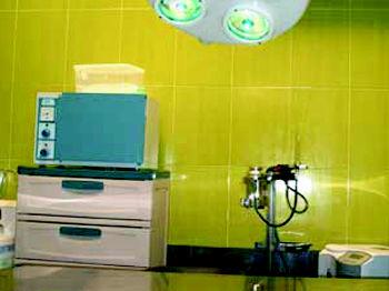 Foto 9 de Veterinarios en Egüés | Clínica Veterinaria Sarriguren