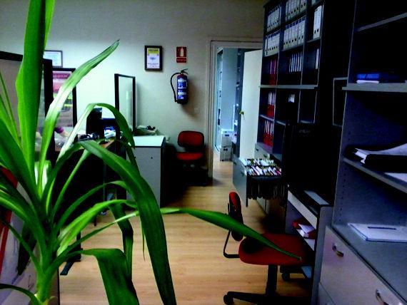 Foto 9 de Asesorías de empresa en Madrid | Asesoría Tribaldos, S.L.