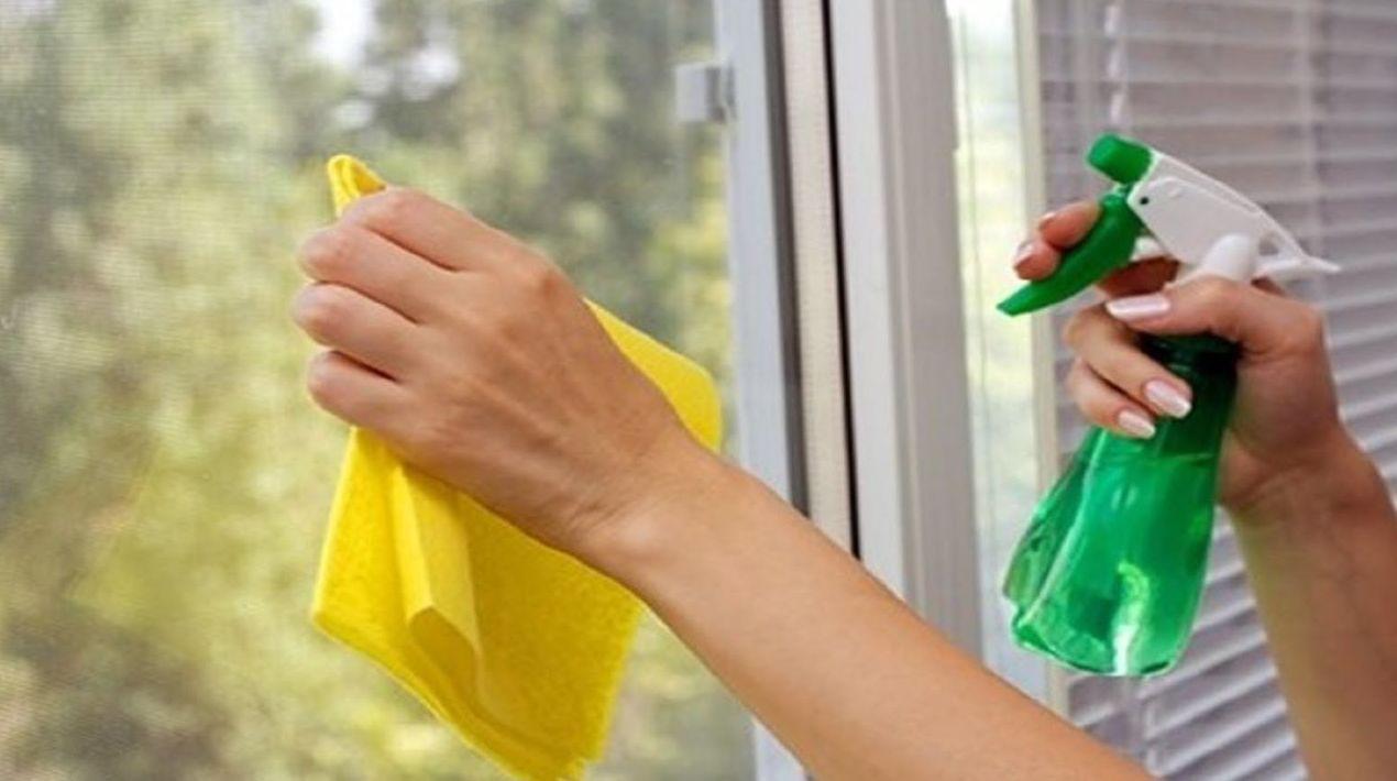 Empleadas de hogar: CATÁLOGO de Gestoría Diéguez