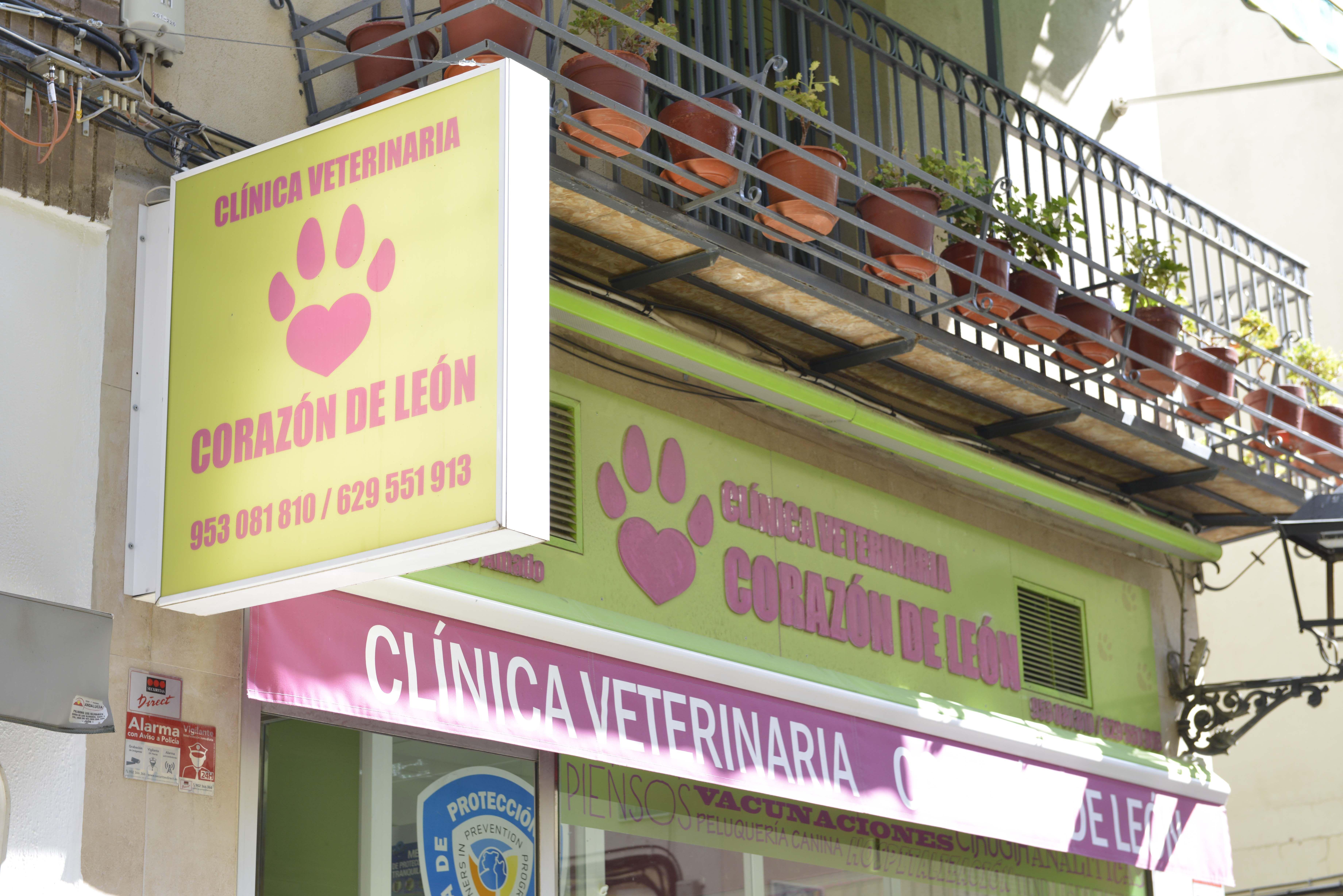 Rótulo de la Clínica Veterinaria Corazón de León