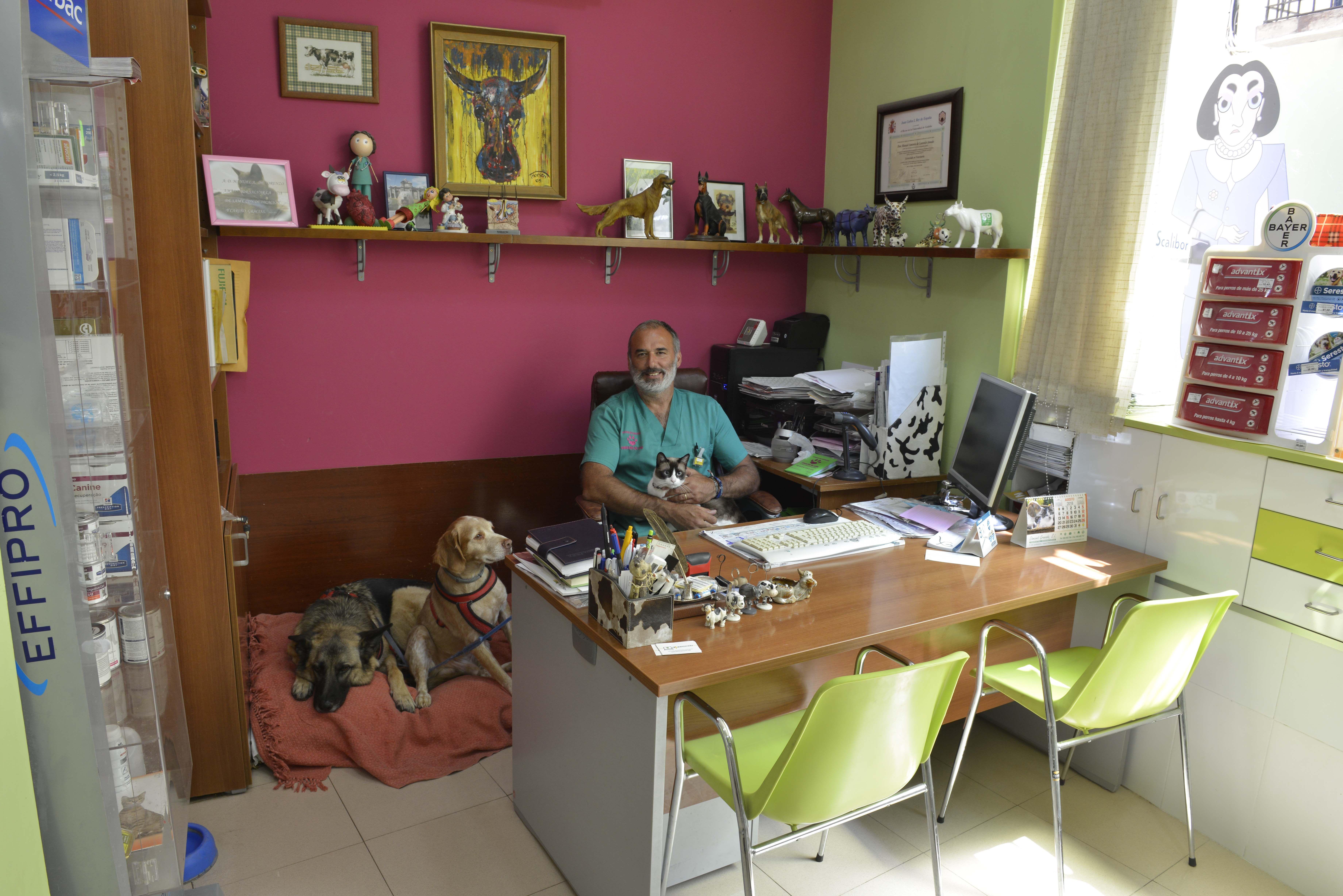 Despacho de la Clínica Veterinaria Corazón de León