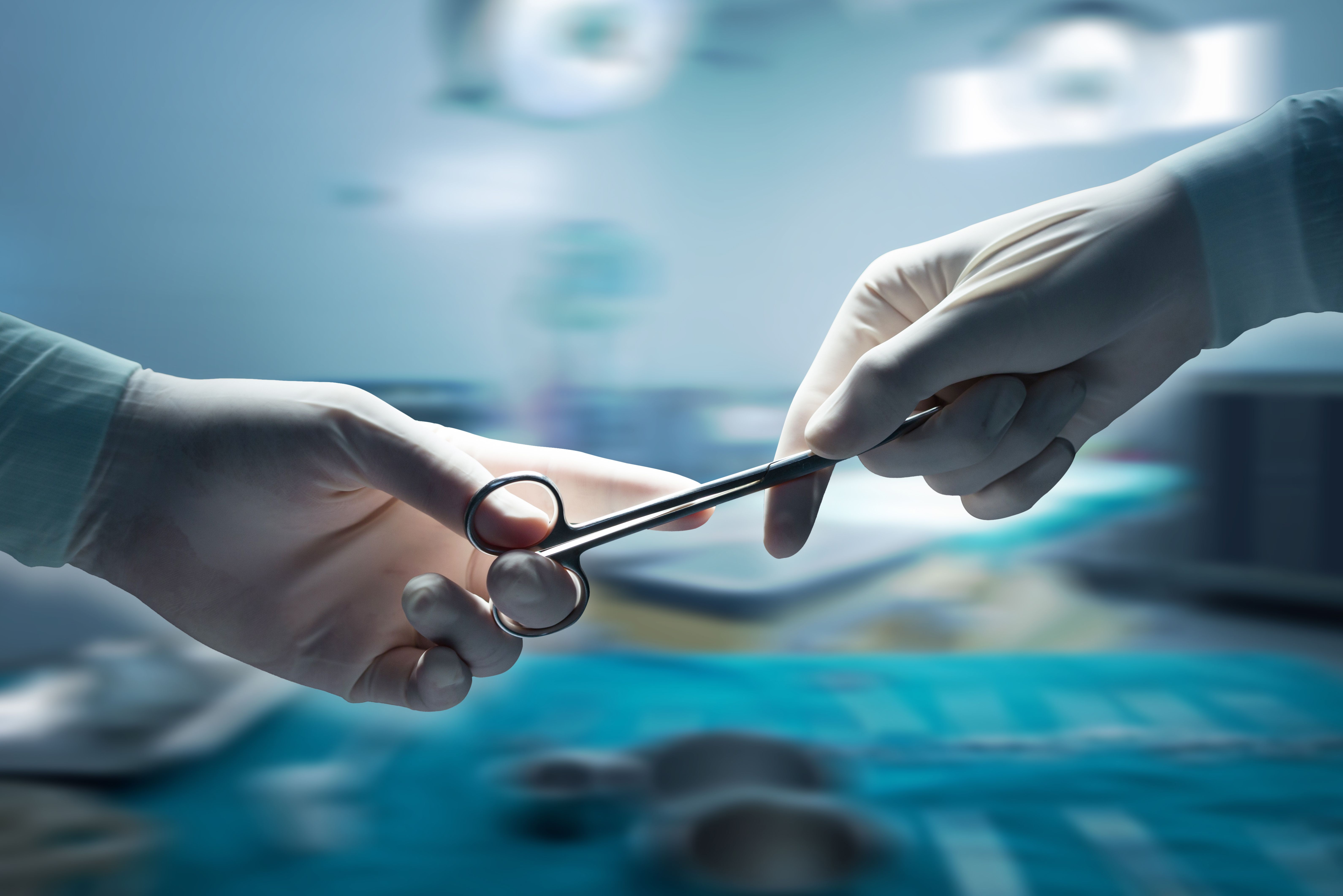 Cirugía: ¿Qué hacemos por tu mascota? de Clínica Veterinaria Corazón de León
