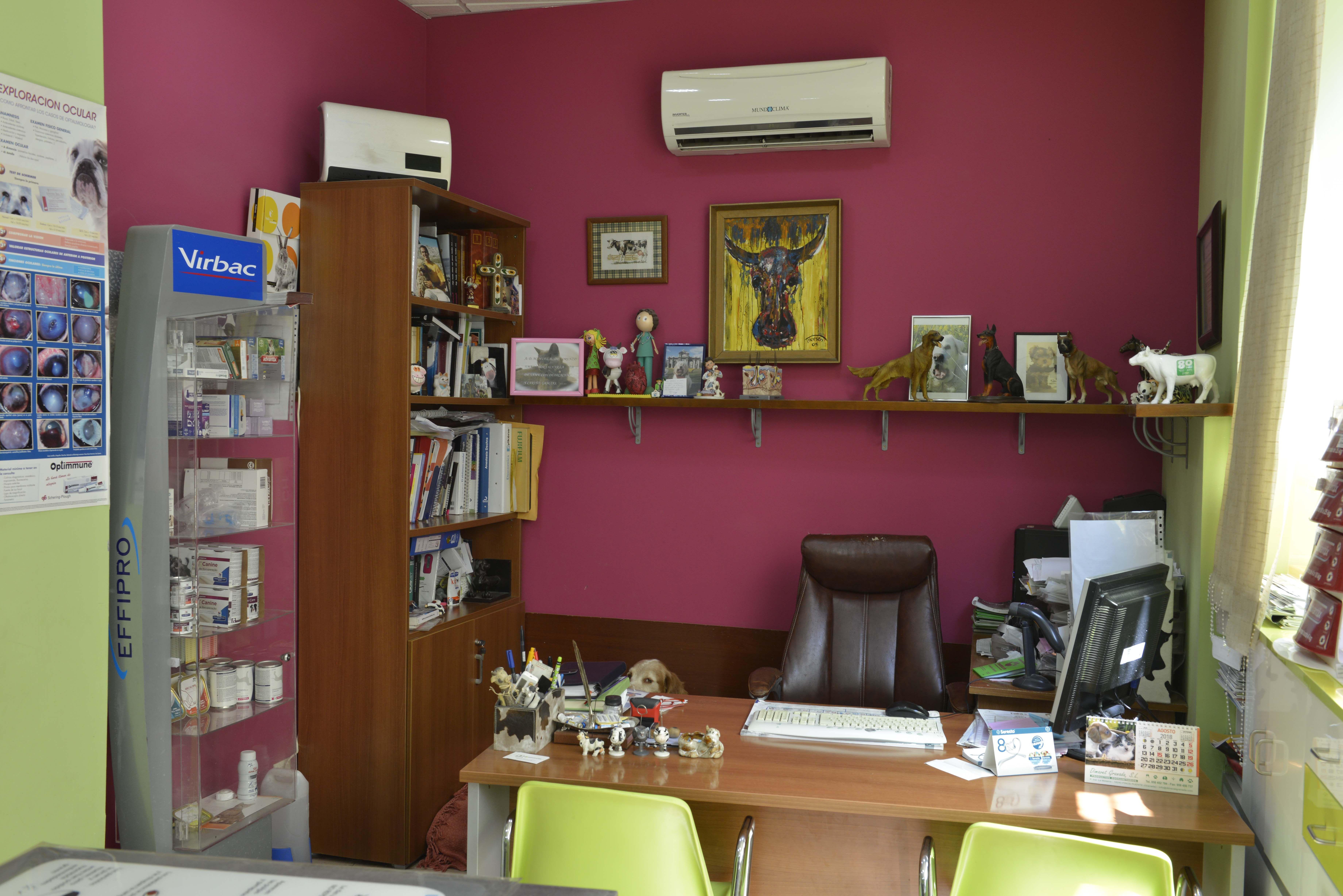 Oficina de la Clínica Veterinaria Corazón de León