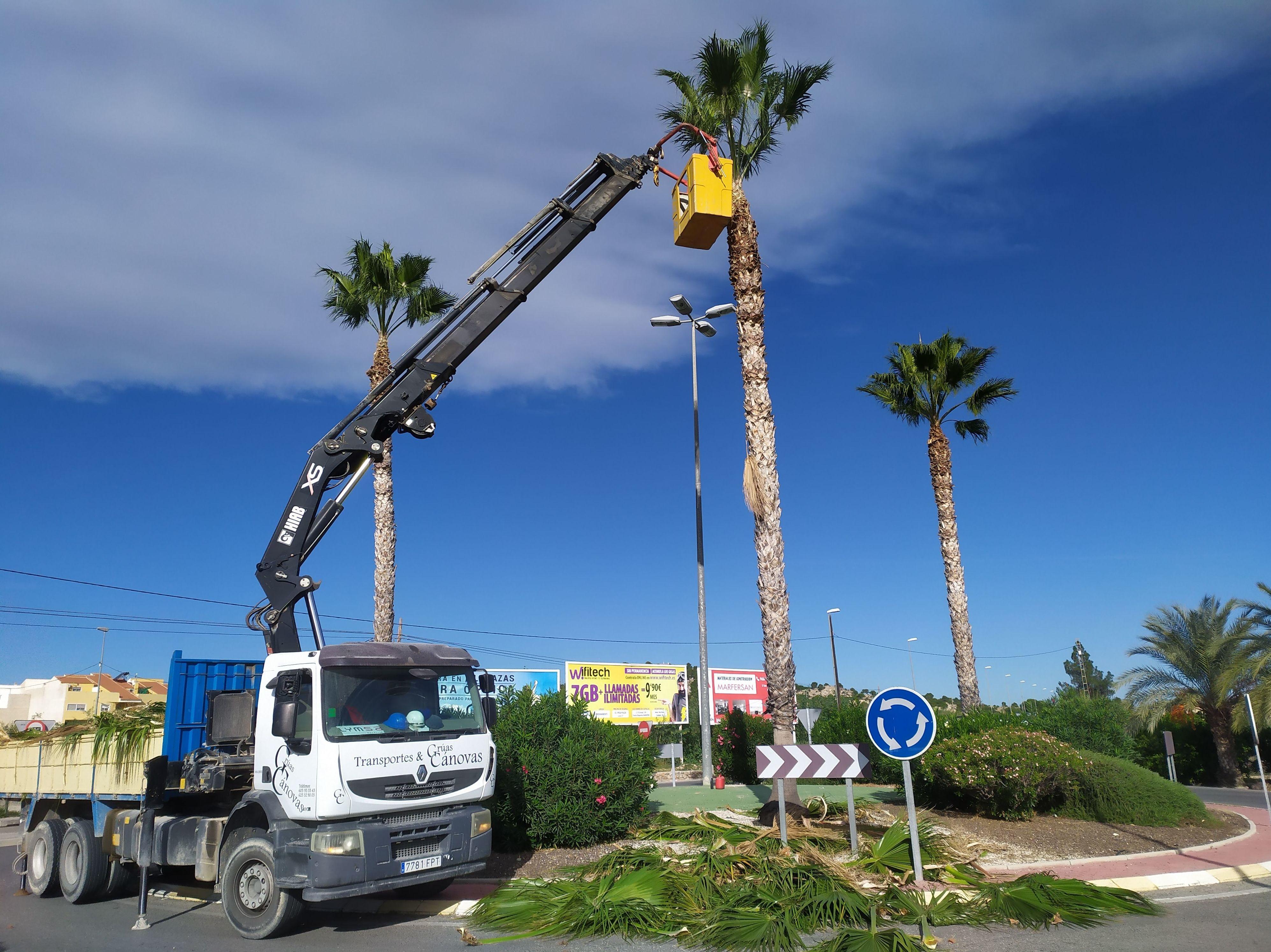 Foto 3 de Diseño y mantenimiento de jardines en  | Grupo Cánovas Jardinería