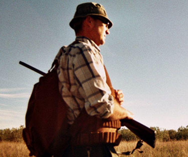 Seguros de caza en Sevilla