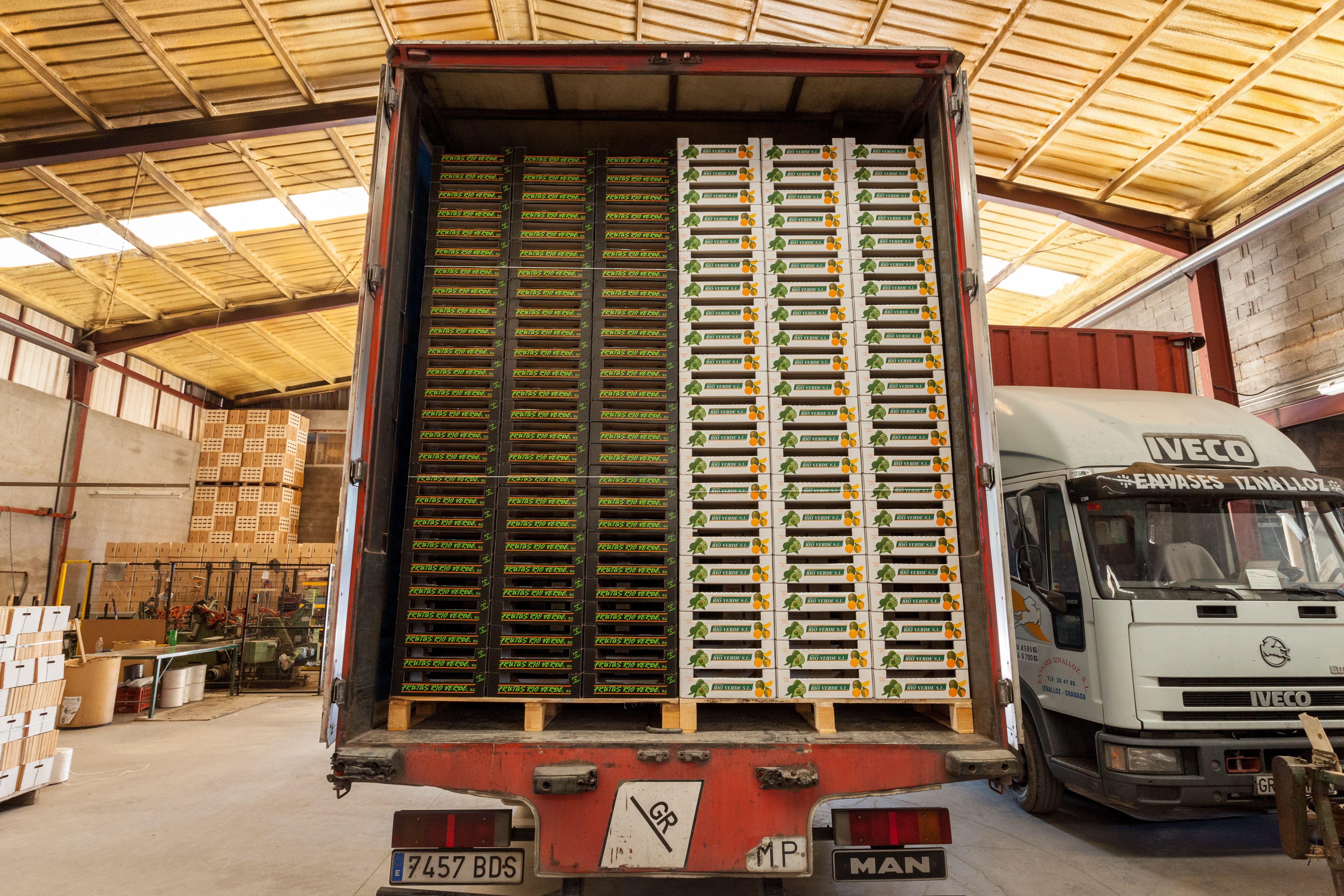 Fabricante de cajas de madera para frutas y hortalizas