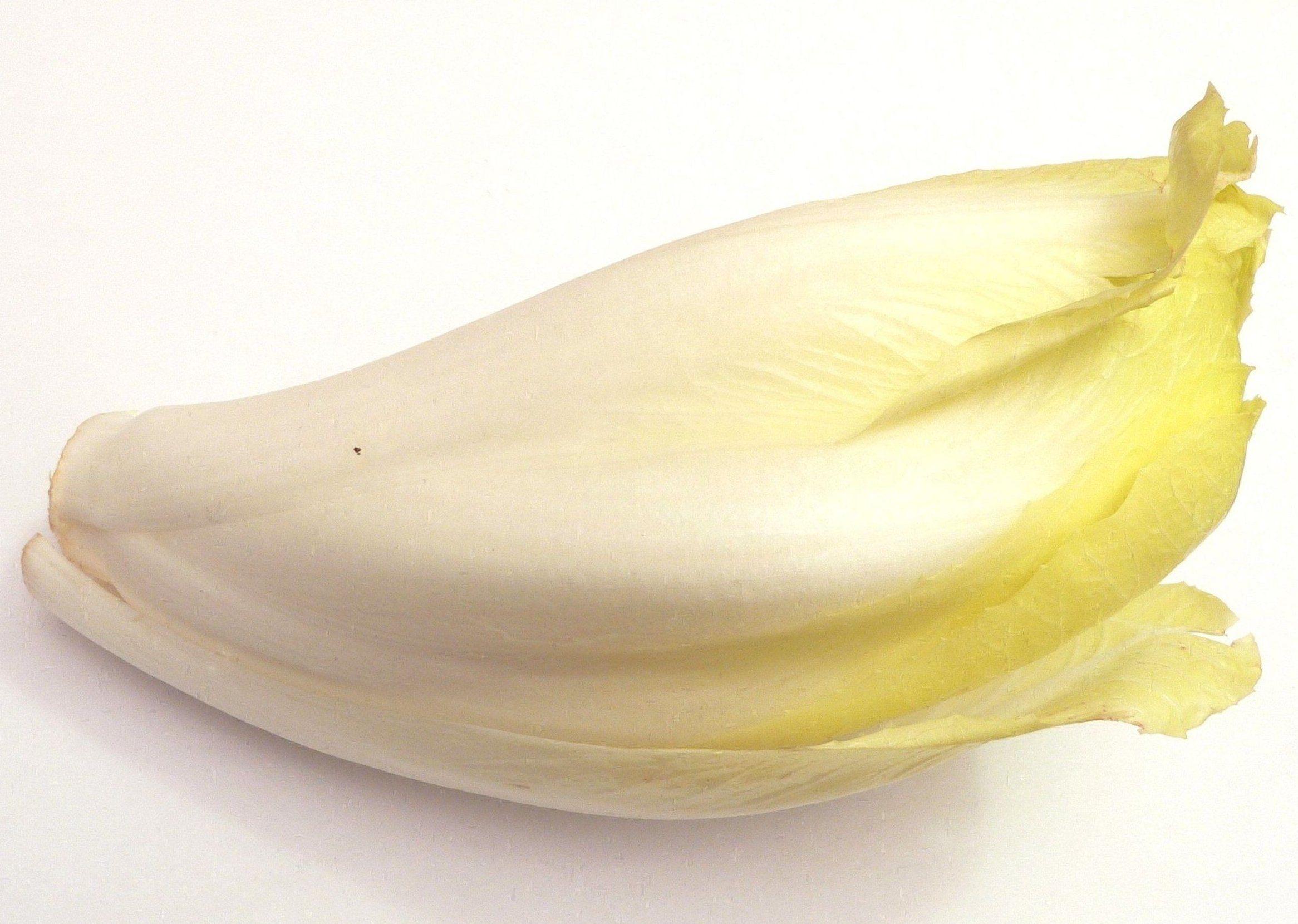 Endivia blanca: Productos de Mundifruit